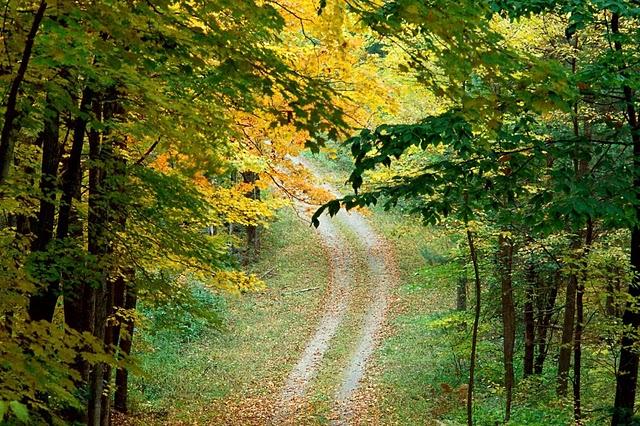 Ai vrea sa mergi pe aceste drumuri? - Poza 19