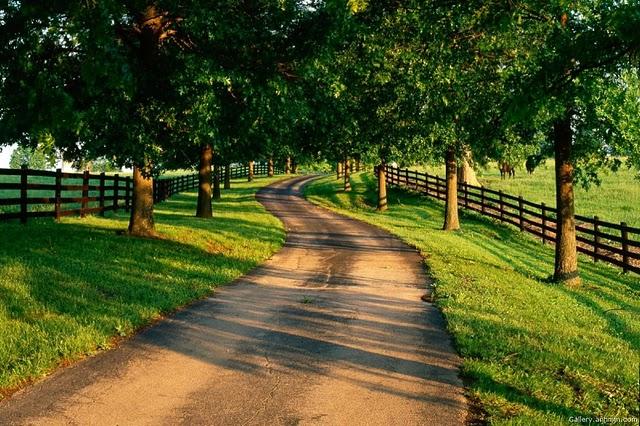 Ai vrea sa mergi pe aceste drumuri? - Poza 1