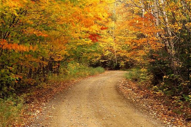 Ai vrea sa mergi pe aceste drumuri? - Poza 6