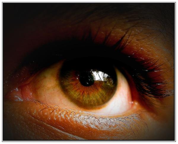 Cu ochii pe ochi - 20 de imagini impresionante
