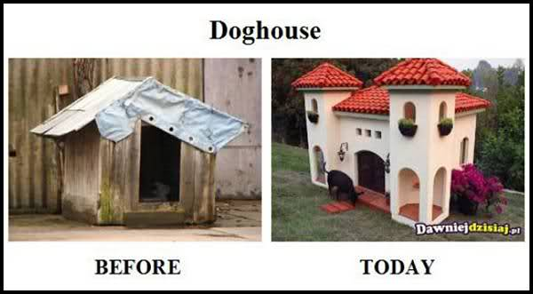 Comparatie funny: Trecut versus prezent - Poza 12