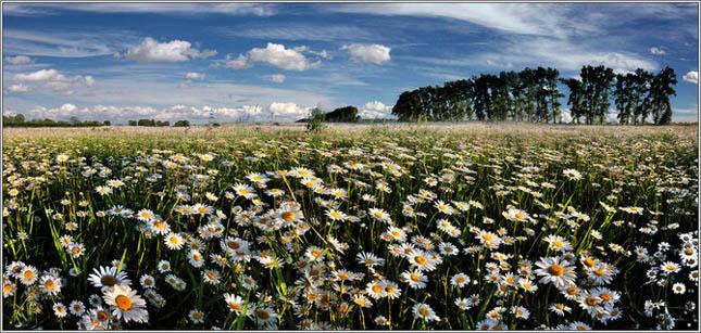 Inspiratie pentru week-end: 60 de peisaje superbe - Poza 25