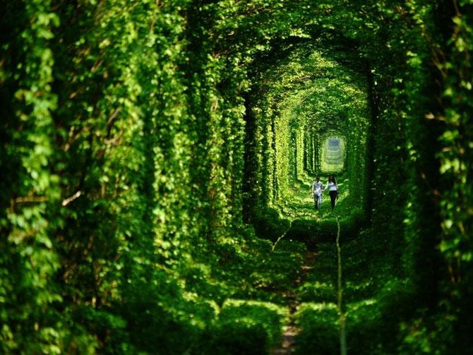 Cele mai frumoase 28 de locuri din lume - Poza 2
