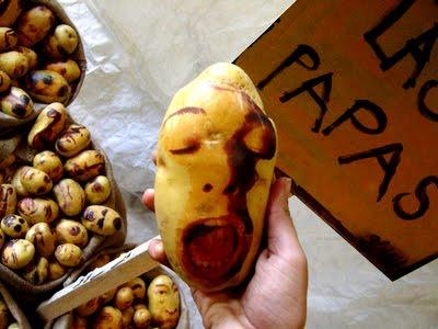 Sculptura in... cartofi! - Poza 28
