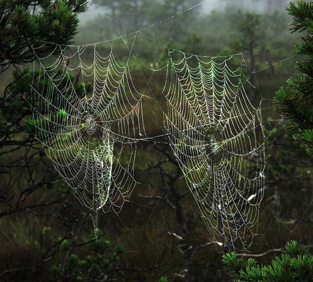 Andris Eglitis - fotograf peisagist - Poza 23