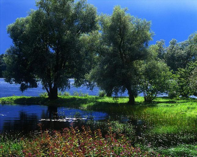 Andris Eglitis - fotograf peisagist - Poza 30
