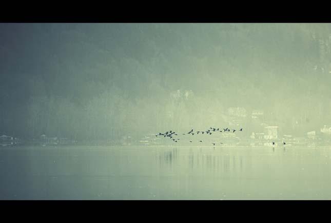 Nicolas Bouvier - Pasari la orizont - Poza 3