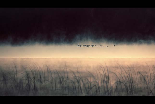 Nicolas Bouvier - Pasari la orizont - Poza 5