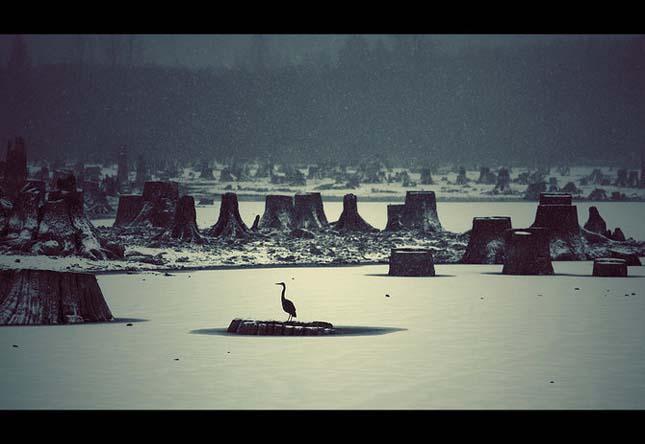 Nicolas Bouvier - Pasari la orizont - Poza 8