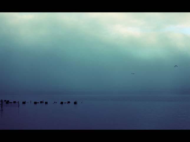 Nicolas Bouvier - Pasari la orizont - Poza 34