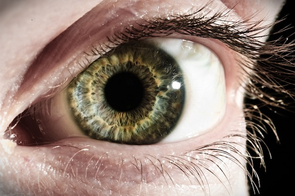 Cu ochii pe ochi - 20 de imagini impresionante - Poza 15