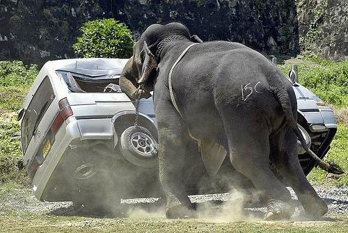 Noi metode nereusite de parcare - Poza 3