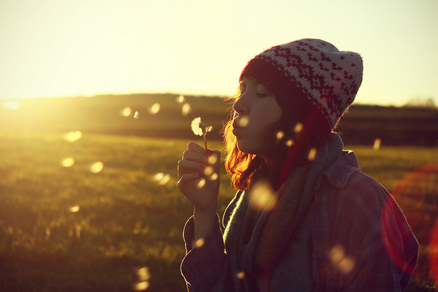 Cand lumina vine din spate: 30 de fotografii grozave! - Poza 23