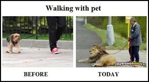 Comparatie funny: Trecut versus prezent - Poza 10