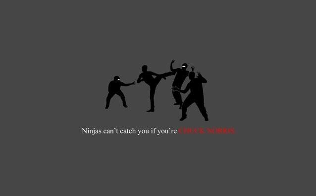 Ninja nu pot sa te prinda - Poza 1