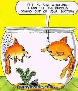 20 de caricaturi amuzante