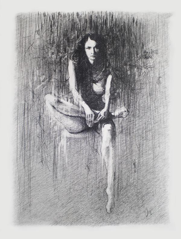 Daan Noppen - Desene fabuloase in creion - Poza 3