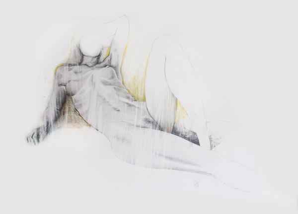 Daan Noppen - Desene fabuloase in creion - Poza 10
