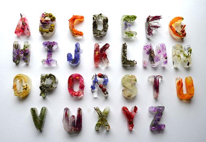 Alfabet din flori si gheata - Poza 1