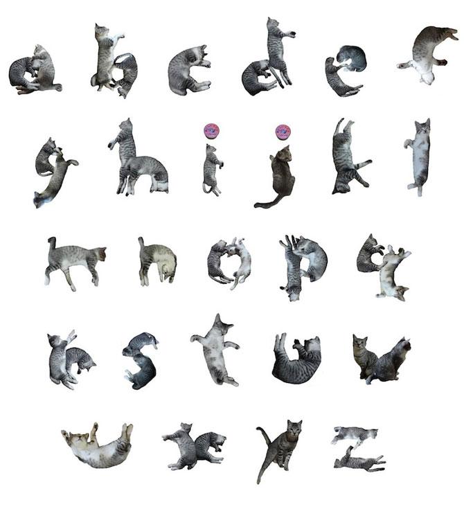 Alfabetul din pisici, de la NekoFont - Poza 1