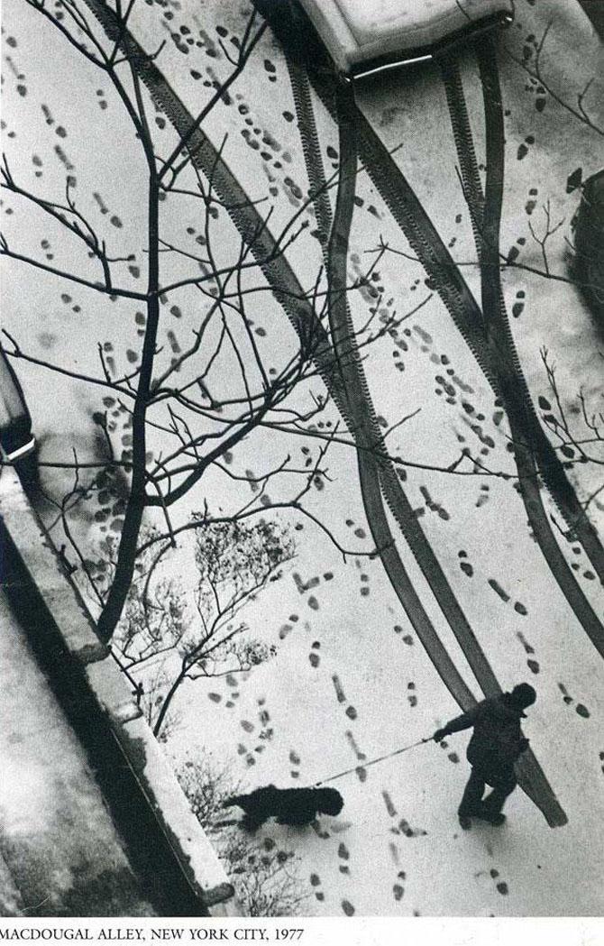 Andre Kertesz: unul dintre cei mai buni fotografi - Poza 16