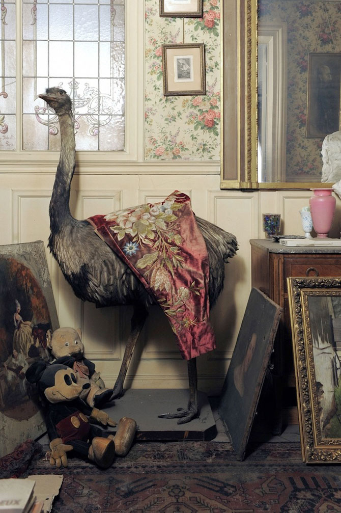 Lux la Paris - Apartamentul abandonat timp de 70 de ani - Poza 6