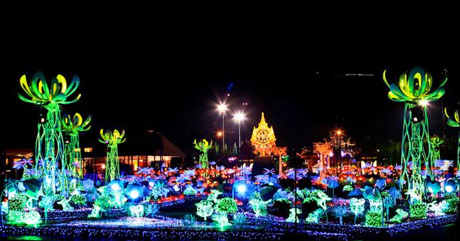Lotusi cu doua milioane de petale din Thailanda - Poza 3