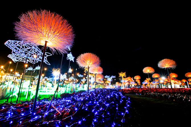 Lotusi cu doua milioane de petale din Thailanda - Poza 8