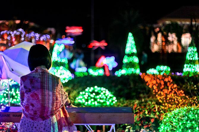 Lotusi cu doua milioane de petale din Thailanda - Poza 10