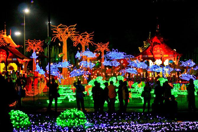 Lotusi cu doua milioane de petale din Thailanda - Poza 13