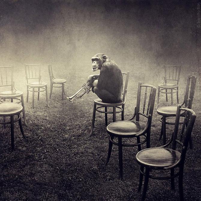 'Dada Reloaded' in foto-colajele Saroltei Ban - Poza 5