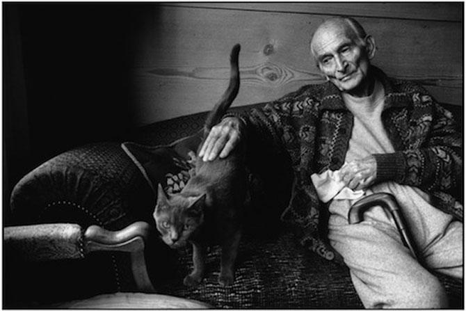 10 artisti celebri cu pisicile lor - Poza 8
