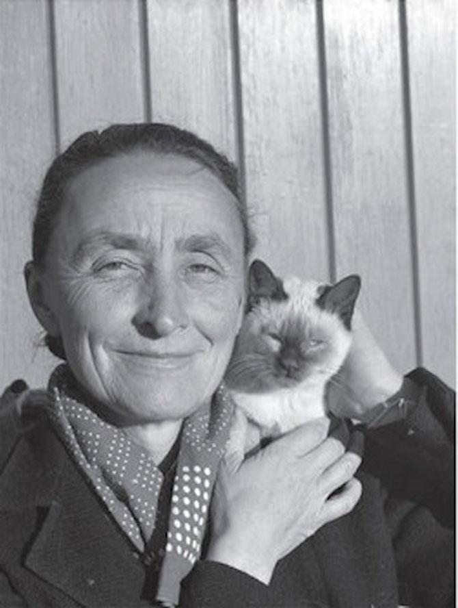 10 artisti celebri cu pisicile lor - Poza 9