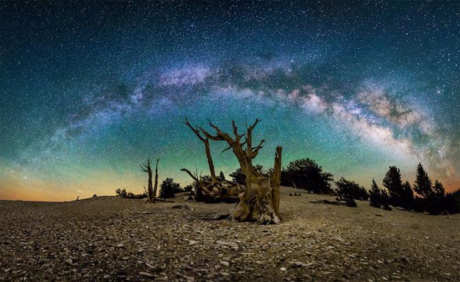 Galaxii stralucitoare, fotografiate de Michael Shainblum - Poza 8