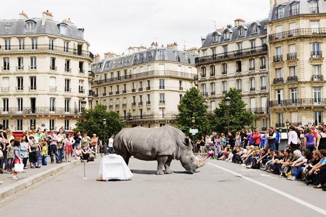 Jungla urbana din fotografiile lui Renaud Marion - Poza 1