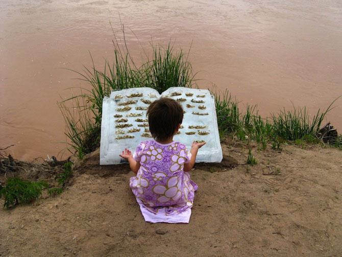Carti plutitoare cu seminte, de Basia Irland - Poza 1