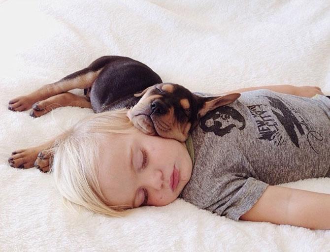 Ora de culcare, cu un baietel si cainele lui - Poza 1