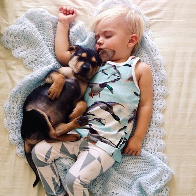 Ora de culcare, cu un baietel si cainele lui - Poza 3