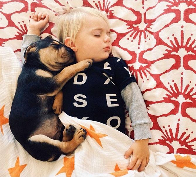 Ora de culcare, cu un baietel si cainele lui - Poza 4