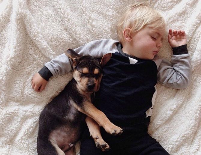 Ora de culcare, cu un baietel si cainele lui - Poza 5