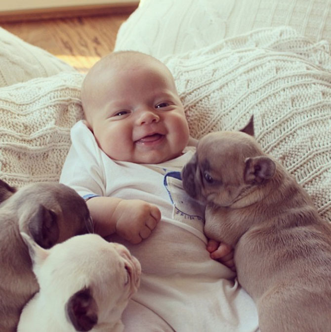 Bebelusul si bulldogii francezi - Poza 3