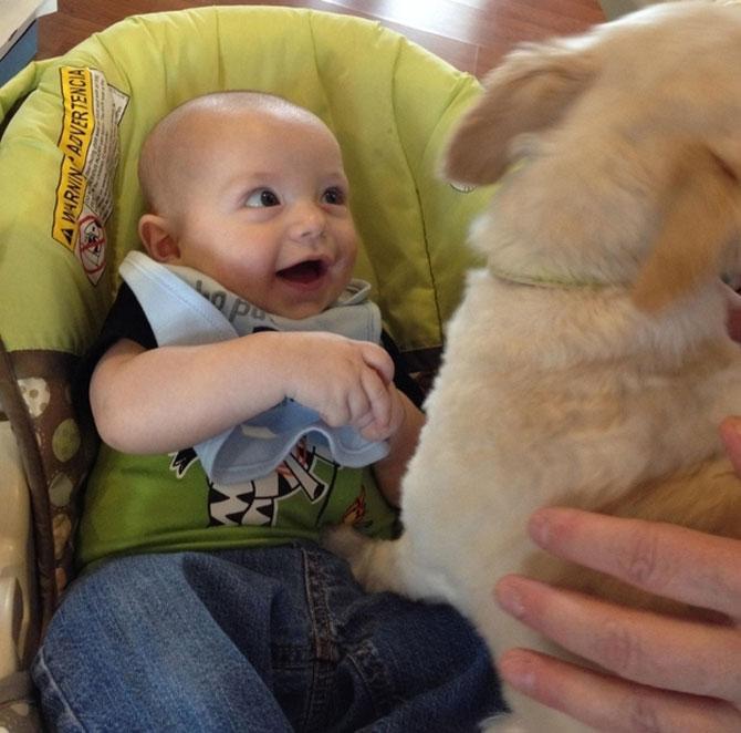 Bebelusi si catei, la prima intalnire - Poza 1