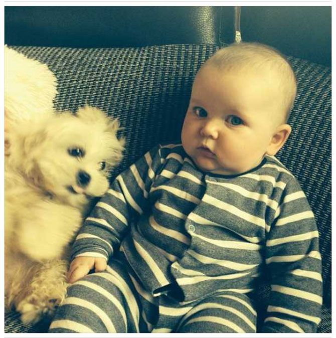 Bebelusi si catei, la prima intalnire - Poza 4