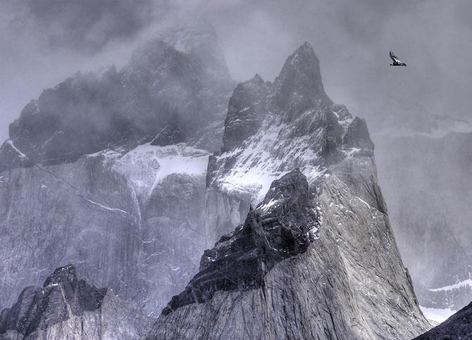 Spectacolul naturii in 25 de fotografii - Poza 20