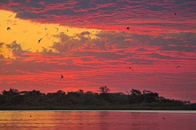 Spectacolul naturii in 25 de fotografii - Poza 23