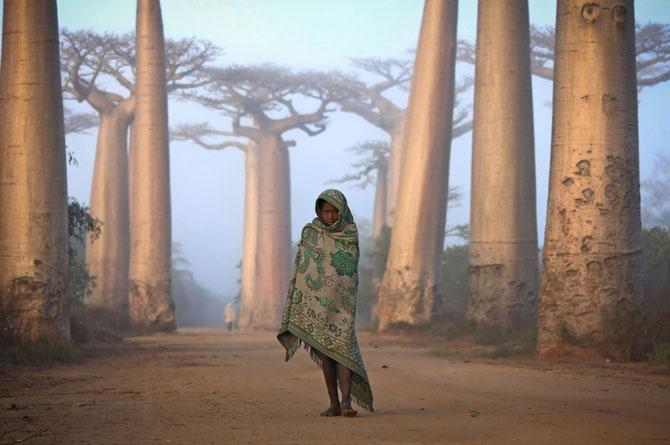Cele mai bune fotografii National Geographic Travel 2012 – Partea I - Poza 15
