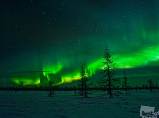 Rusia lui 2012 in 21 de fotografii emotionante - Poza 21