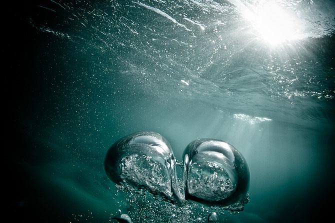 Mark Tipple, la dans cu bulele de aer - Poza 3