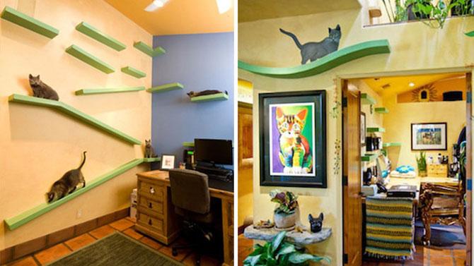 Loc de joaca pentru pisici, de $35.000 - Poza 2