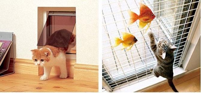 Paradisul pisicilor, de Asahi Kasei - Poza 4